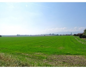 COSSONAY-VILLE 180000.0m2